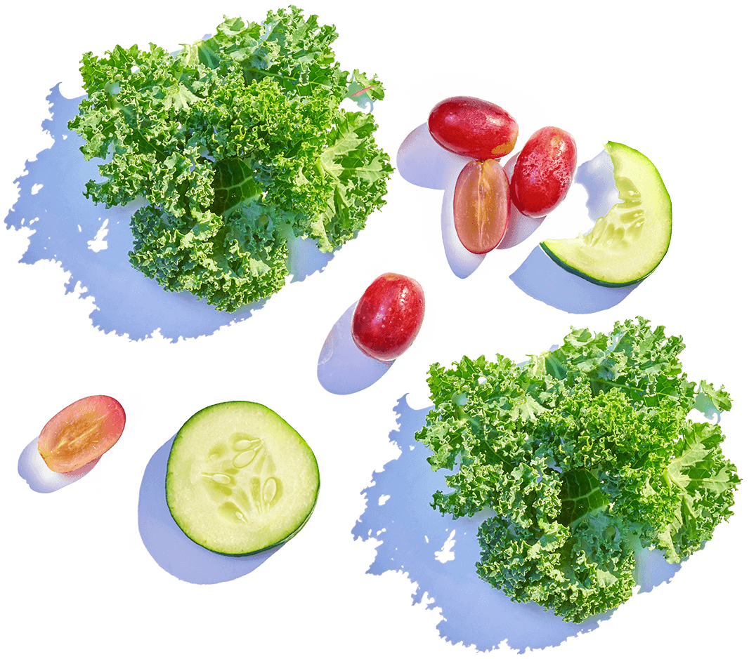 Image composed of various salad toppings